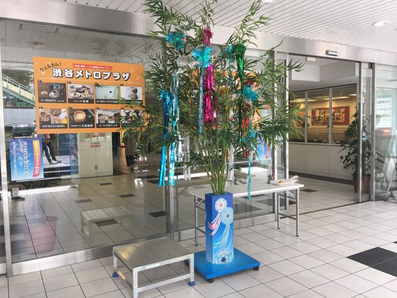 sibuya.tanabata